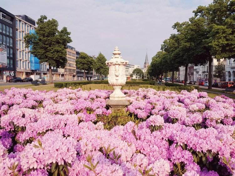 Binnenstad parken Arnhem