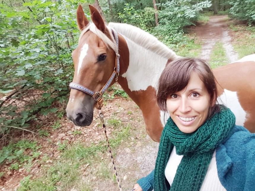 Boswandeling bont paard Warnsborn Arnhem