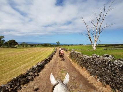 Quinta da Terca paardrijden Sao Miguel Azoren Portugal