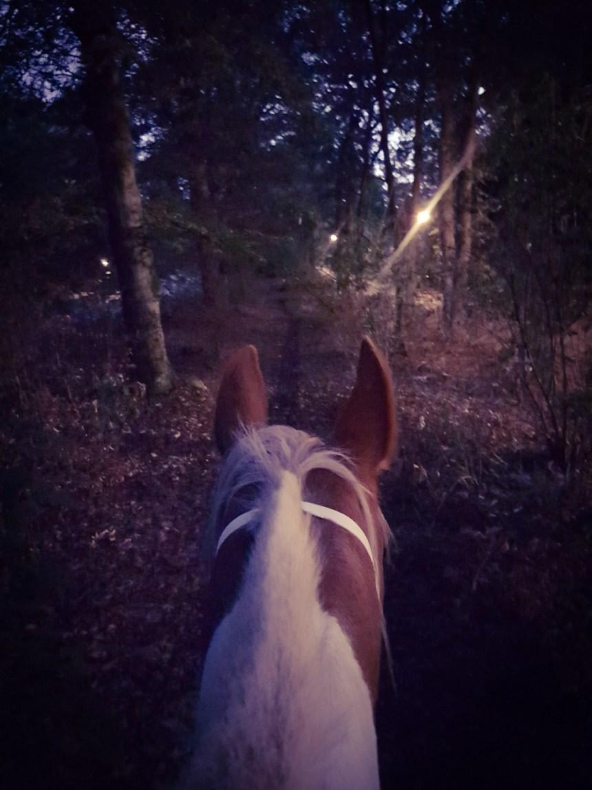 buitenrit in het donker te paard