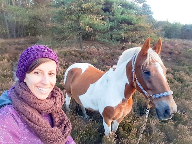 Bonte pony Warnsborn Arnhem Schaarsbergen