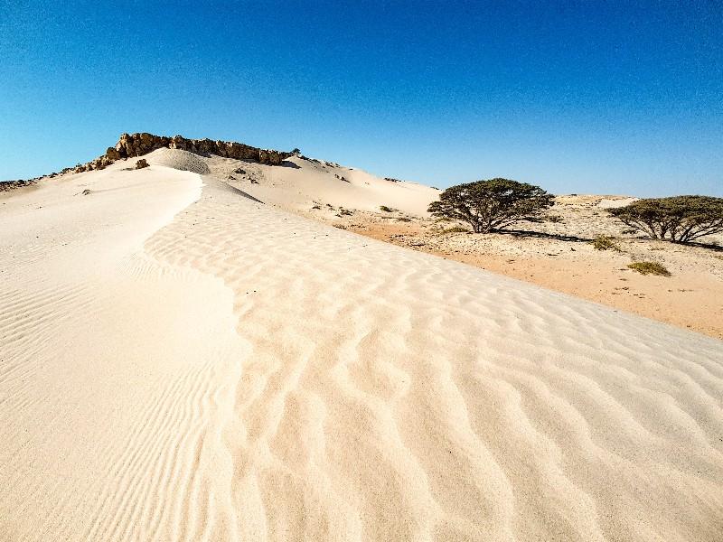 Ras Madrakah zandduinen Oman kamperen