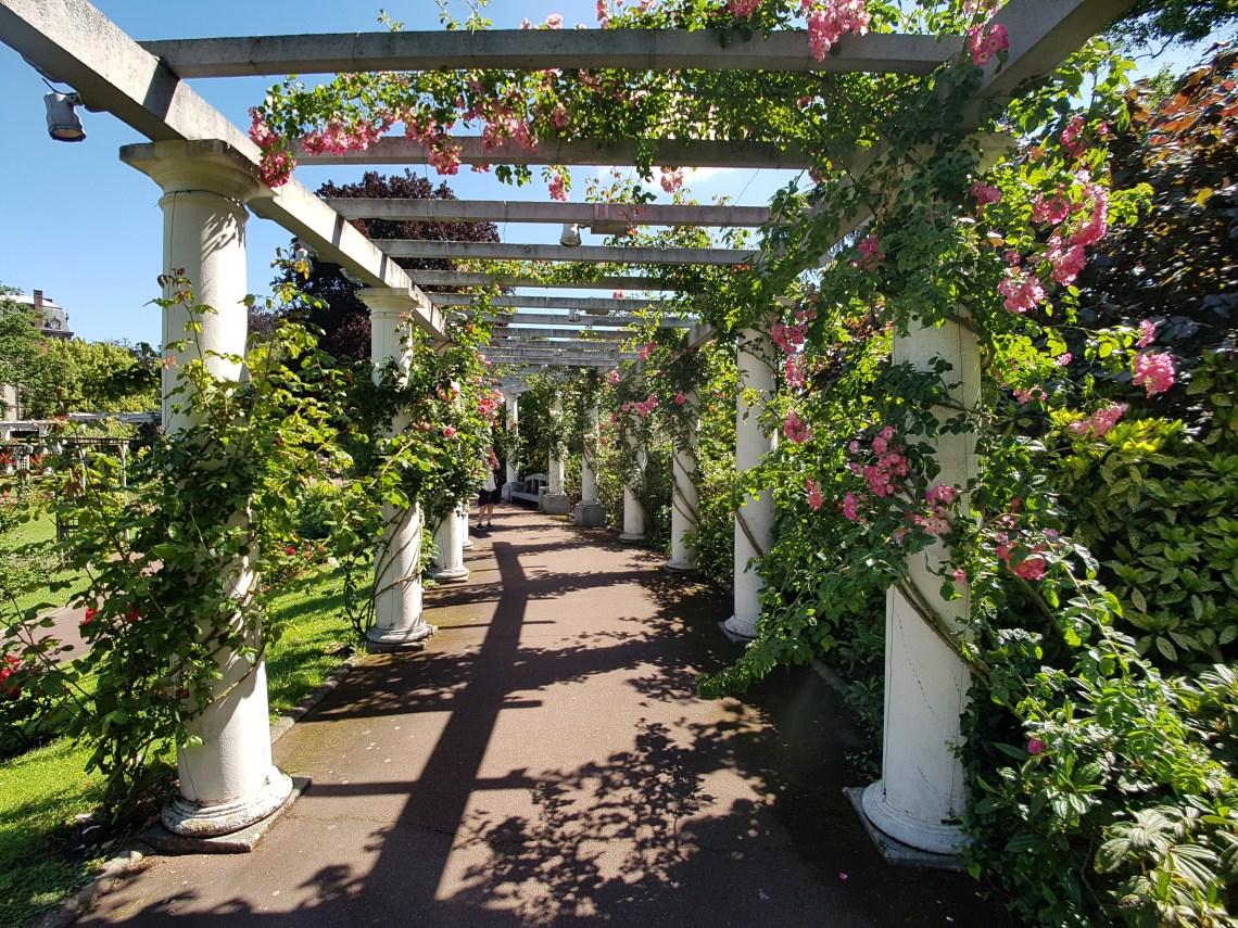 Rozentuin Jardin Lecoq Clermont Ferrand Frankrijk