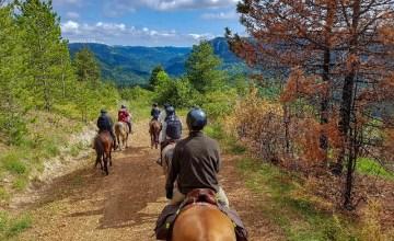 Paardrijden Zuid Frankrijk Lozere