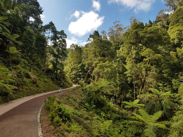 Natuurgebied Caldeira Velha Azoren Sao Miguel Portugal (2)