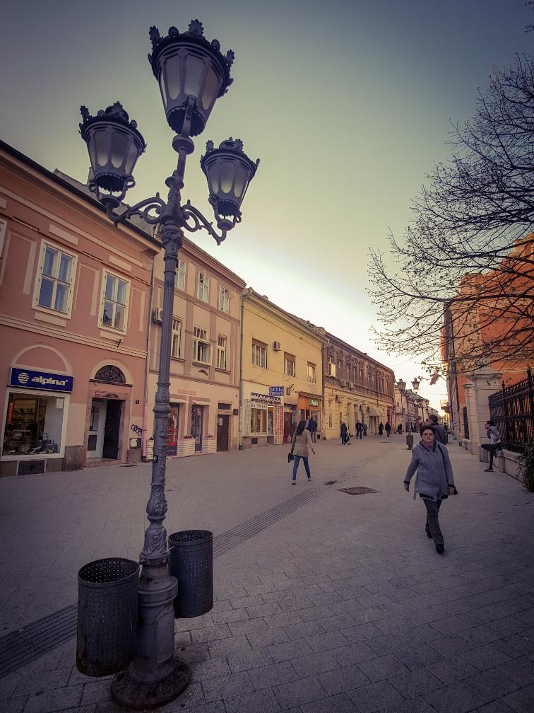 Zmaj jovina Novi Sad Servië