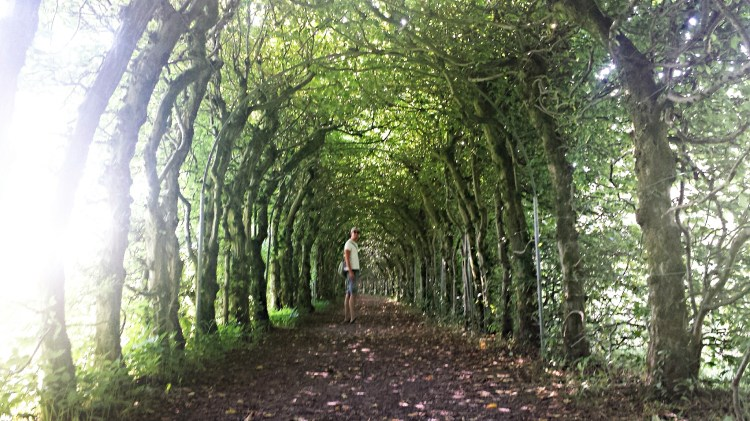 La Charmille in Theux België Tunnel of Love