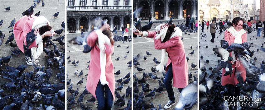 camera carry on pigeon attack