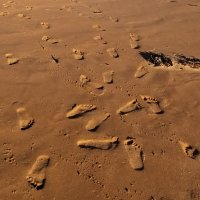 Footsteps of Life!