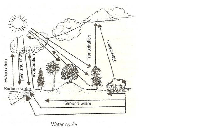Lakhmir Singh Class 9 Chapter 14 Natural Resources