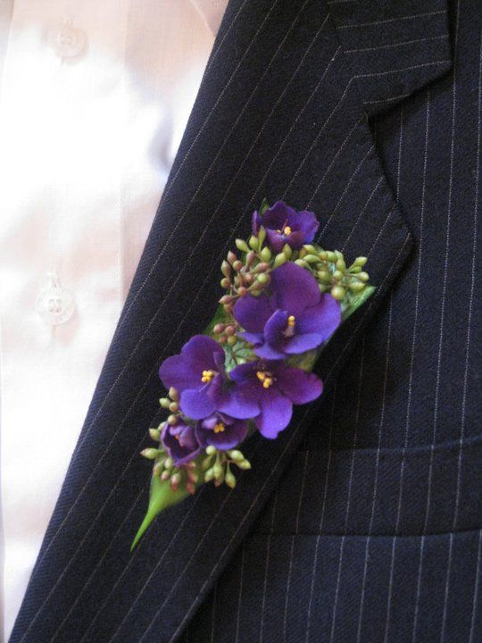prendido novio ultra violet