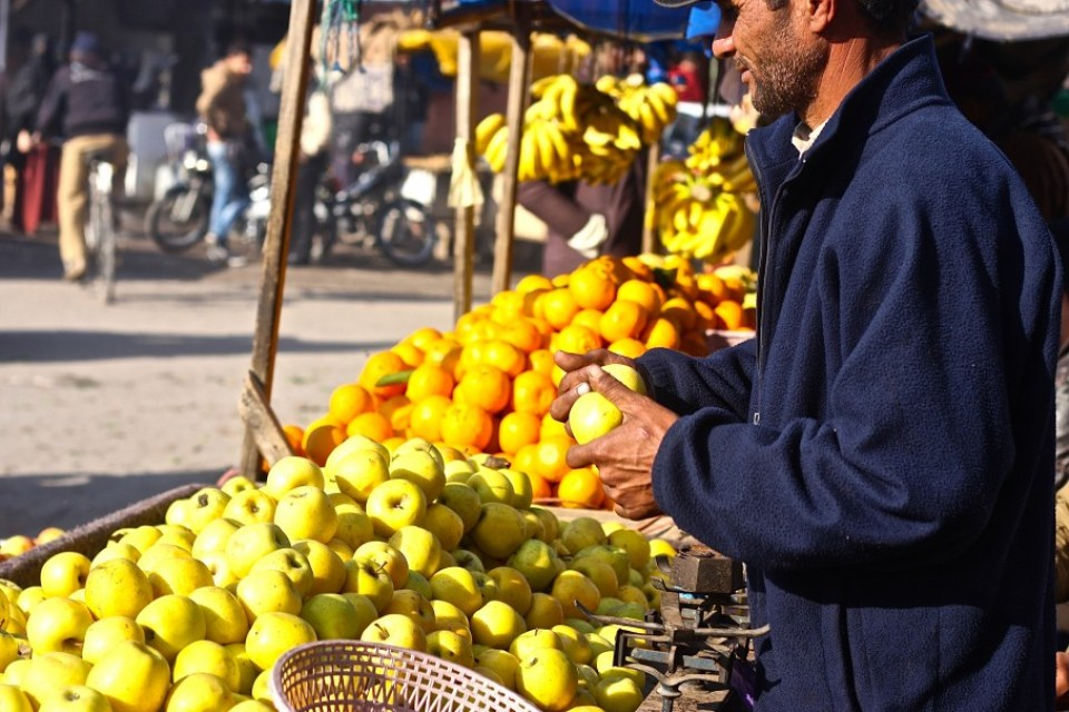 MARRAKESH FRUITS