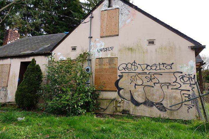 Skyway Abandoned House (Graffiti)