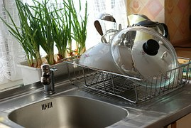 kitchen sink and plants