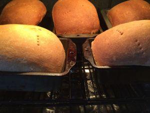 rye baking in oven