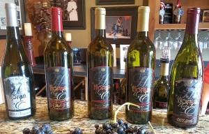 Horan Estate wine flight