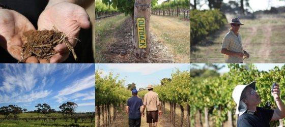 Thistledown Wines mosaic