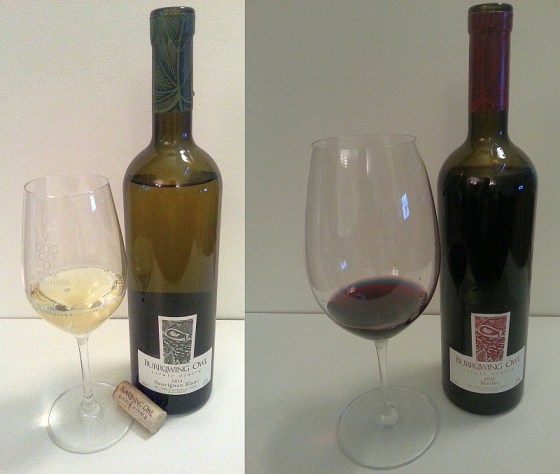 Burrowing Owl Sauvignon Blanc 2014 and Merlot 2012