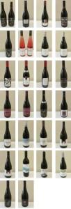 Pinot Noir Mosaic