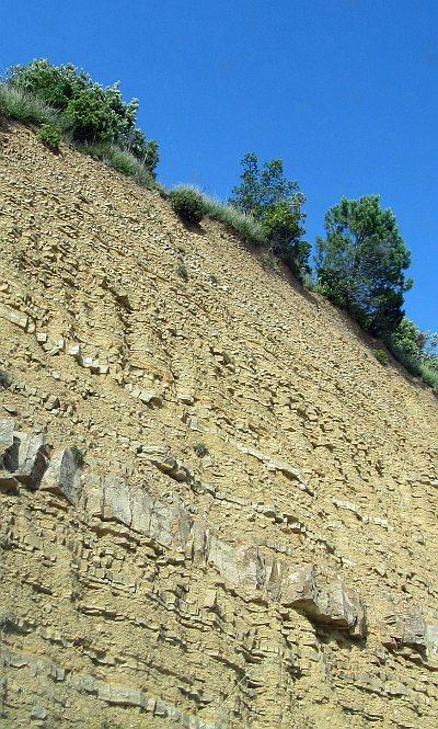 Gallestro soil in Montalcino