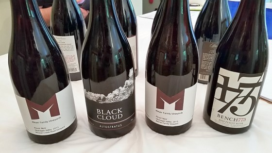 Meyer Family Vineyards, Black Cloud, and Bench 1775 Pinot Noirs