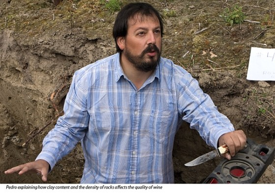 Pedro Parra at Okanagan Crush Pad in a soil pit