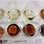 A flight of Sherries for WSET Masterclass at VanWineFest