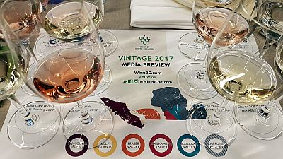 BC 2017 vintage preview