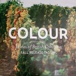 Colour VQA tasting booklet