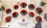 Chianti Classico Gran Selezione wines in glass at seminar