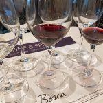 Luigi Bosca Malbec 2016 and Malbec Terroir Los Miradores 2016 in glasses for us to taste