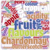 2019 favourite white wine word cloud small