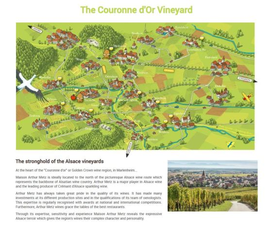Arthur Metz Couronne d'Or Vineyard