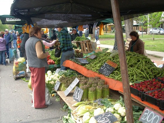 A Farmer's Market in Rancagua - strawberries available