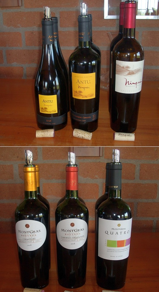 A wide variety of red wines to taste at Viña Montgras