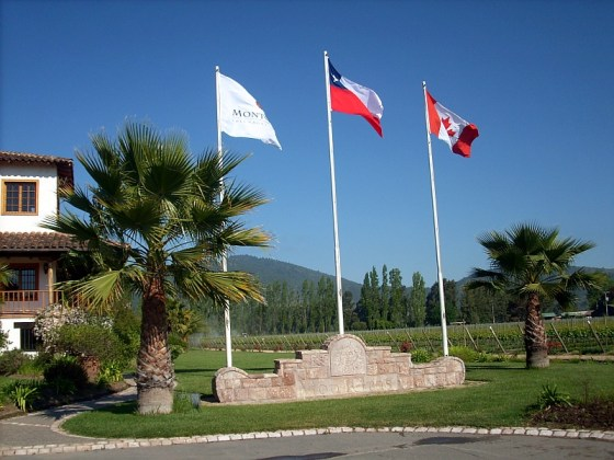 Flying the Canadian flag at Viña Montgras