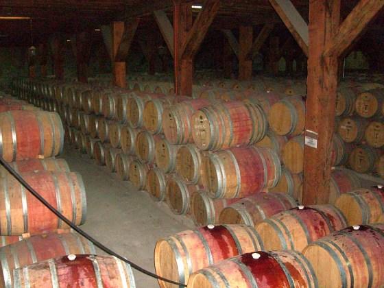 Lots of barrels with red wine ageing at Viña Santa Rita