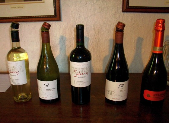 Viña Undurraga Sibaris and Terroir Hunter wines to taste