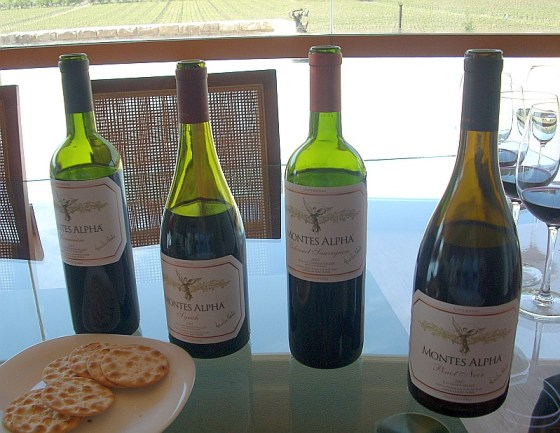 Vina Montes Alpha Series of wines for me to taste from Pinot Noir, Carmenere, Syrah and Cabernet Sauvignon