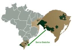 Brasil wine regions