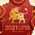 Chinese New Year of the Metal Ox (Courtesy New year vector created by pikisuperstar - www.freepik.com)