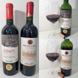 Vina Santa Rita Medalla Real Gran Reserva Cabernet Sauvignon 2016 and Vinedos Emiliana Organic Vineyards COYAM 2018