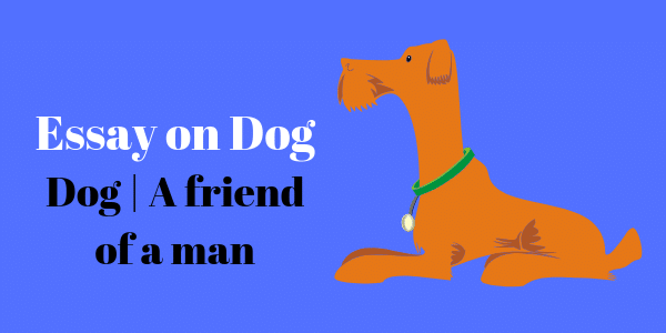 Dog _ A friend of a man essay