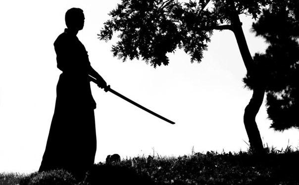 Притча полная мудрости: Лучшая защита от негатива