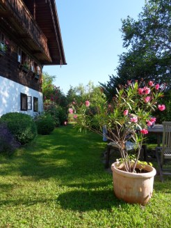 Am Attersee (61)