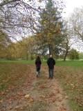 Arboretum Chèvreloup (24)