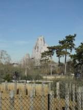 Zoo de Vincennes (126)