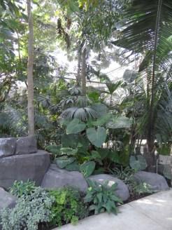 Zoo de Vincennes (249)