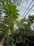 Zoo de Vincennes (303)