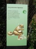 Zoo de Vincennes (325)